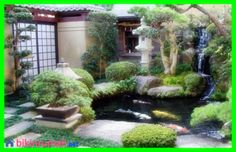 1000 images about my garden on pinterest small japanese