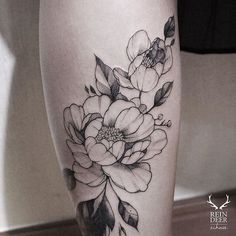 Image result for zihwa peony