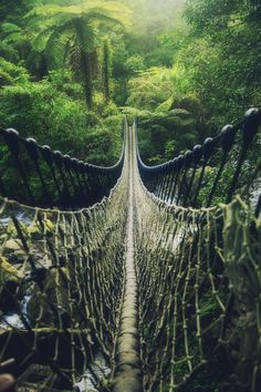 """Begin to Adventure"" - photo by Hanson Mao, via 500px;  pedestrian suspension bridge in Taiwan"