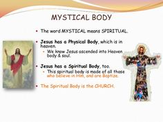 We are the mystical body of Christ Catholic - Google Search
