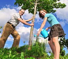 Stop Crime! Save Money! Sell Your House! Plant a Tree http://www.rodalenews.com/benefits-trees