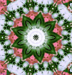 """Pretty in Pink and Green"" by Shawna Rowe // Pink and green floral kaleidoscope. Kaleidoscopes as a child were fascinating magical toys. So many different colorful combinations and never the same pattern twice. The beauty inside of them was yours alone to admire. In this digital age we can now share these infinite combinations of color... // Imagekind.com -- Buy stunning, museum-quality fine art prints, framed prints, and canvas prints directly from independent working artists and…"