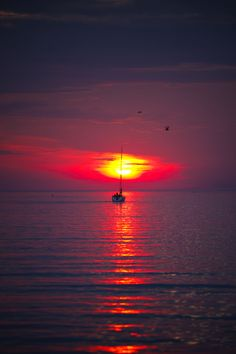 Red dawn, gulf of Finland. Places Around The World, Around The Worlds, Future Days, Natural Scenery, Beautiful Sunrise, Big Sky, Interior Exterior, Water Lilies, Helsinki
