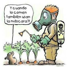 Receta para reducir pesticidas de frutas y verduras