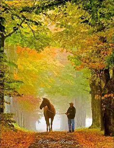 morning walk photo from england