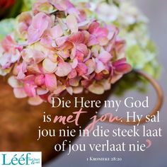 Best Quotes, Life Quotes, Afrikaanse Quotes, Thankful Quotes, Inspirational Qoutes, Empowering Quotes, Positive Quotes, Bible, Positivity