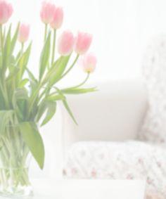 Blütenreiche Hortensien mit diesen 7 Tricks Roy Black, Tricks, Plants, Clean Apartment, Pippi Longstocking, Cut Flowers, Plant, Planets
