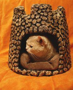 Фотографии El Gato. Аксессуары для животных ручной работы. | 6 альбомов