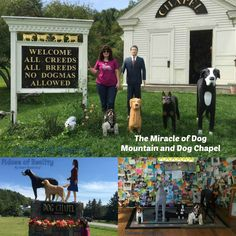 The Miracle of Dog Mountain and Dog Chapel - Fidose of Reality