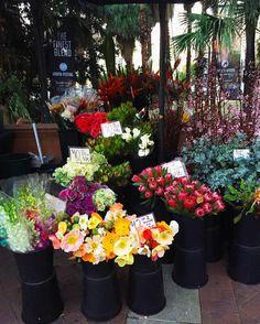 Gorgeous little outdoor flower shop at Circular Quay #CircularQuay #flowers #flowershop #sydneysider #eveningwalk #wanderlust #vscocam #vscoflowers #
