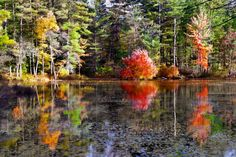 Friends Lake