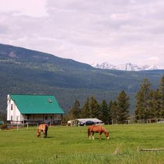 Who would like to live here? A dream house between Radium and Golden, BC with the Bugaboo mountains in the back