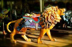 King of the Carousel by Rafael Silveira