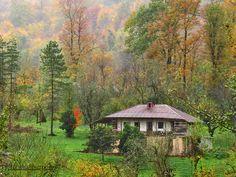 پاییز، اوج جلوه گری گیلان