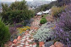 California's native landscape design
