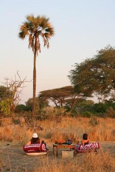 Katuma bush #hangouts | Holidays in Tanzania | Mbali Mbali Lodges and Camps Everyday Objects, Tanzania, Lodges, South Africa, Safari, National Parks, African, Camping, Holidays