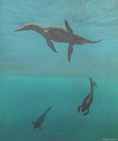 Short-necked plesiosaur Dolicorhynchops and flightless marine birds Hesperornis (Douglas Henderson)