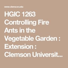 HGIC 1263 Controlling Fire Ants in the Vegetable Garden   : Extension : Clemson University : South Carolina