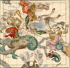 AND #Andromeda ( Andromeda , #Andromedae , #And ) is a boreal autumn constellation ( culminates around the meridian at 22 10 November ) . It covers 722 square degrees . The star is called alpha Alpheratz or Sirrah . This star is shared with Pegasus which is one of the summits Square (once was referred to as Delta Pegasi ).