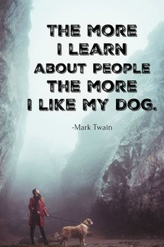 81 Best Canine Quotable Images