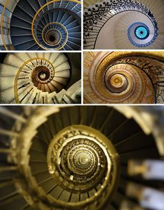 Spiral Stairway to Heaven Winding Staircase, Curved Staircase, Grand Staircase, Spiral Staircases, Flower Of Life Tattoo, Fibonacci Spiral, Take The Stairs, Spiral Pattern, Stairway To Heaven