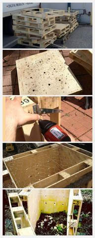 DIY recycled pallet compost.