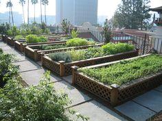 De Stedelijke Foodprint: oppervlakte/inwoner nodig voor eten
