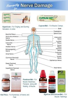 Homeopathy Medicine, Ayurvedic Medicine, Median Nerve, Homeopathy Treatment, Men Health Tips, Home Health Remedies, General Knowledge Facts, Nerve Pain, Homeopathic Remedies