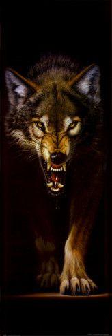 Wolf Door Poster