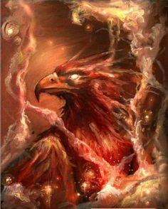 Phoenix by Tim shumate Magical Creatures, Fantasy Creatures, Phenix Tattoo, Phoenix Images, Phoenix Quotes, Art Mur, Tatoo Art, Tattoo Bird, Mythological Creatures