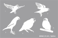 文鳥のグラスを作ってみました♪ - ◆白文鳥キティとベランダ園芸◆