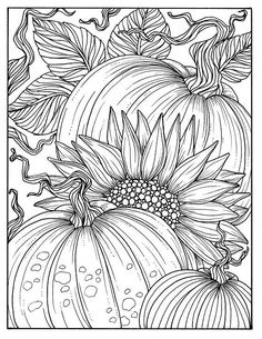 Pumpkins and Sunflower Digital Coloring Page Fall, Adult coloring, digi stamp, thanksgiving