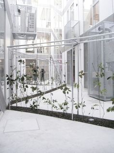 Chuo Architects took an unused space between condo units, and created a dynamic partition by stretching thin wires from the ground up to the 3rd floor. They then planted several vines which would continue to modify the landscape as time passes.