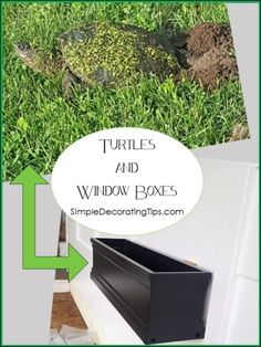 Carpenter Trick to Repair Furniture, HometoCottage Collapsible Dog Crate, Dog Crate Cover, Brick Cottage, Luxury Vinyl Flooring, Custom Window Treatments, Panel Curtains, Doorway Curtain, Window Boxes, Exposed Brick
