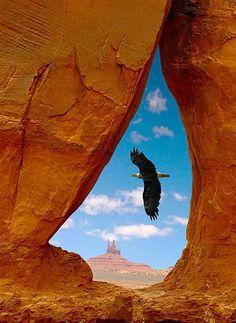 Huge bird flys through Navajo Teardrop Arch in Arizona