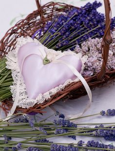 Cut and hand tied lavender in basket (Lavandula 'Royal Velvet' and 'Melissa') with lavender sachets