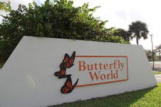 Coconut Creek is the Butterfly Capital of the World.