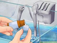 How to Make an Aquarium (with Pictures) - wikiHow Turtle Aquarium, Diy Aquarium, Aquariums, Best Aquarium Filter, Best Sheets, Cost Saving, Freshwater Fish, Pet Store, Pisces