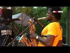 Afrikafestival Hertme - Seun Kuti & Egypt 80