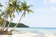 9 reasons to go to Phu Quoc right now