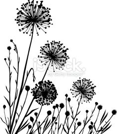 Plants composition Royalty Free Stock Vector Art Illustration