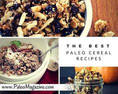 The Best Paleo Cereal Recipes on PaleoMagazine.com  http://paleomagazine.com/40-delicious-paleo-cereal-recipes