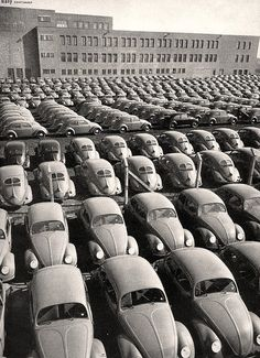 Punch-buggy black-and-white! Millions of Beetles were built during its production run. And although production of