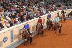 Stopping the Head Bob at the Lope, Part 1 – America's Horse Daily