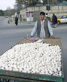 The Egg Man in Kabul