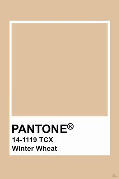 Pantone Winter Wheat -  Pantone Winter Wheat