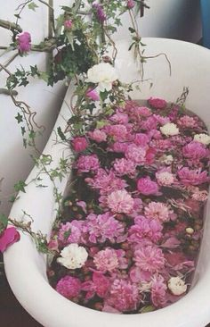 Bathtub of Pink Flowers