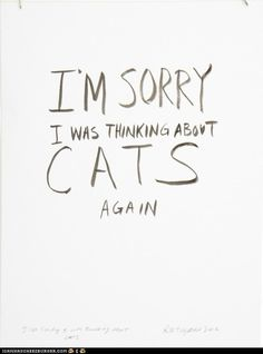 i'm sorry. i was thinking about cats again. (if you haven't seen the video to which this is paying homage, please click through and watch it. it is awesome.)