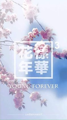 |BTS|TMBMIL pt.3 YOUNG FOREVER