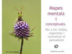 mapes-mentals-i-conceptuals by Guida Allès Pons via Slideshare